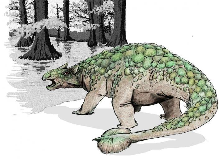 Ankilozavri