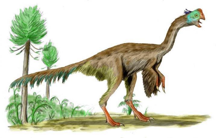 Gigantoraptorji